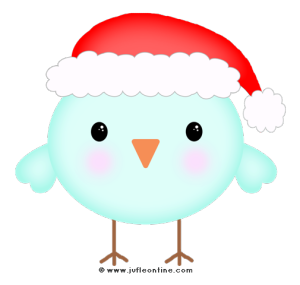 Bird glow colour santa